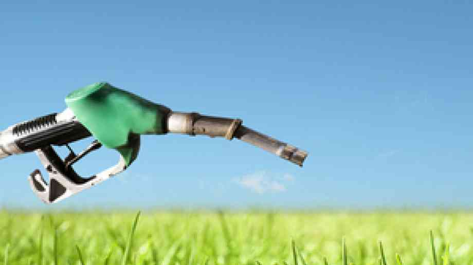 New biofuel targets to double use of renewable fuels in UK transports sector
